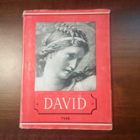 Lamač Miroslav – David
