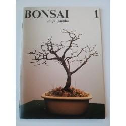 Bonsai, moja záľuba 1.