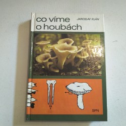 Co víme o houbách